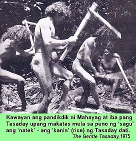 Mga Katangian ng Java Man at Taong Tabon?